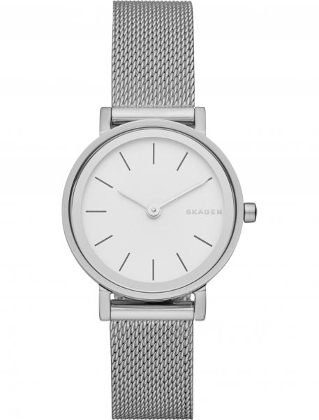 Наручные часы Skagen SKW2441