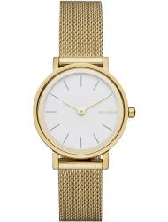 Наручные часы Skagen SKW2443