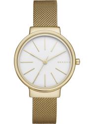 Наручные часы Skagen SKW2477