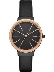 Наручные часы Skagen SKW2480