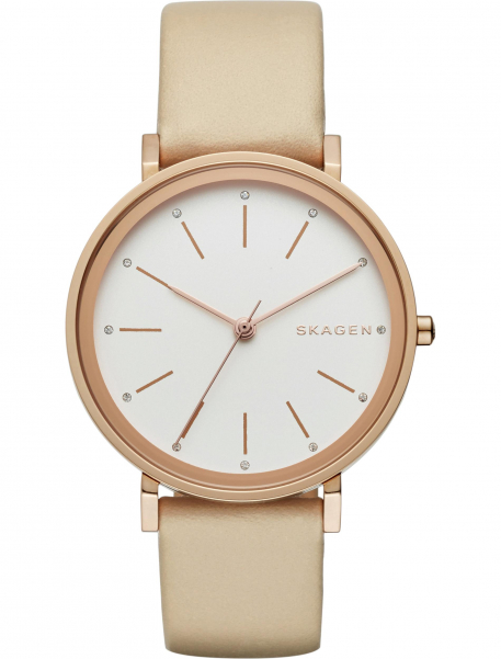 Наручные часы Skagen SKW2489