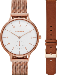 Наручные часы Skagen SKW1079