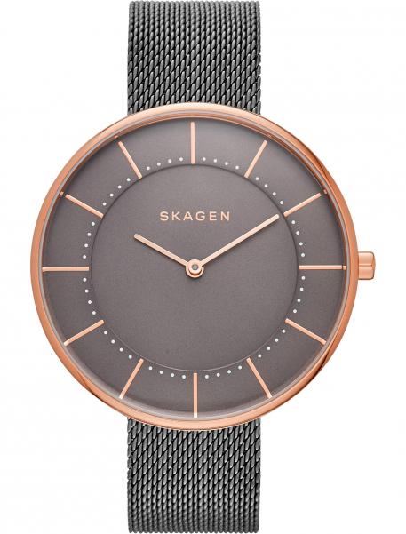 Наручные часы Skagen SKW2584
