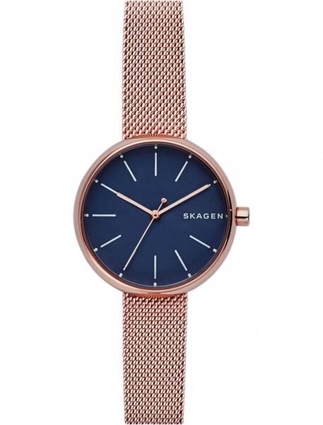 Наручные часы Skagen SKW2593