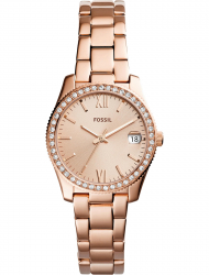 Наручные часы Fossil ES4318