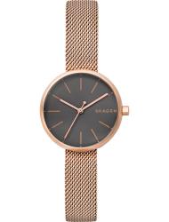 Наручные часы Skagen SKW2645