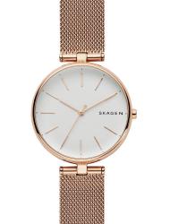 Наручные часы Skagen SKW2709