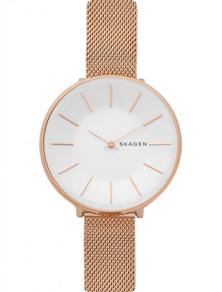 Наручные часы Skagen SKW2688