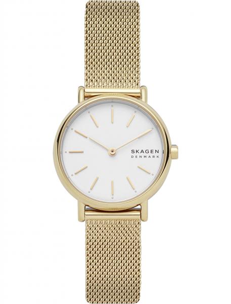 Наручные часы Skagen SKW2693