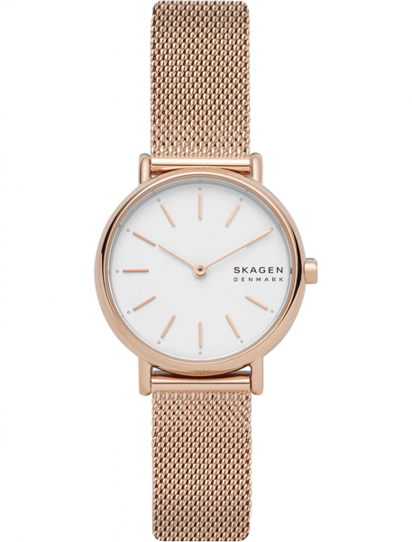 Наручные часы Skagen SKW2694