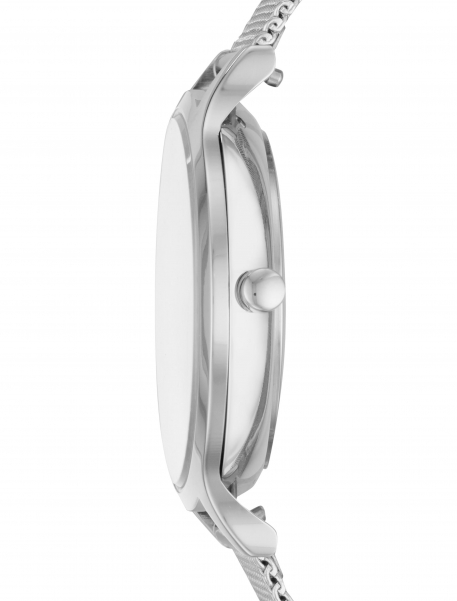 Наручные часы Skagen SKW2718 - фото сбоку