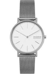 Наручные часы Skagen SKW2785