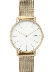 Наручные часы Skagen SKW2795