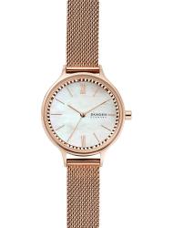 Наручные часы Skagen SKW2865