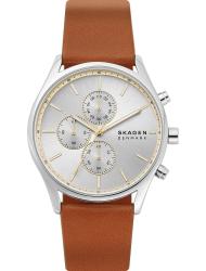 Наручные часы Skagen SKW6607