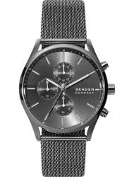 Наручные часы Skagen SKW6608