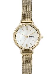 Наручные часы Skagen SKW2907