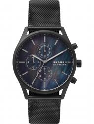 Наручные часы Skagen SKW6651