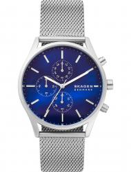 Наручные часы Skagen SKW6652