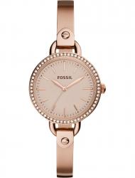 Наручные часы Fossil BQ3163