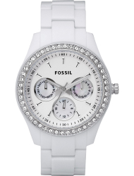 Наручные часы Fossil ES1967