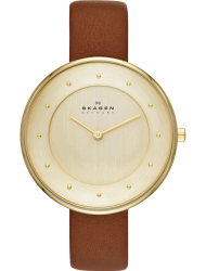 Наручные часы Skagen SKW2138