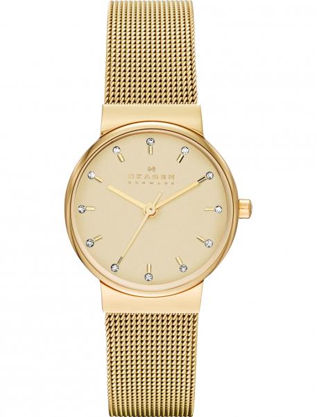 Наручные часы Skagen SKW2196