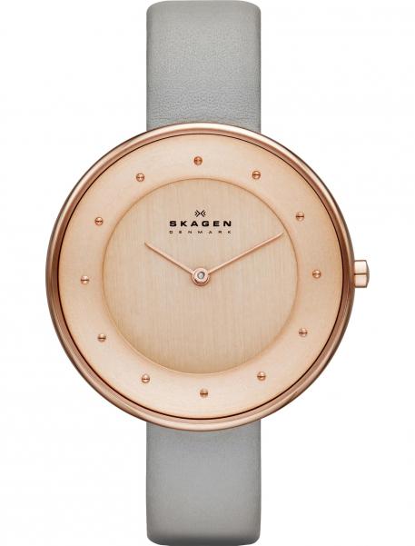 Наручные часы Skagen SKW2139