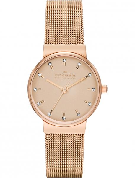 Наручные часы Skagen SKW2197