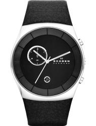 Наручные часы Skagen SKW6070
