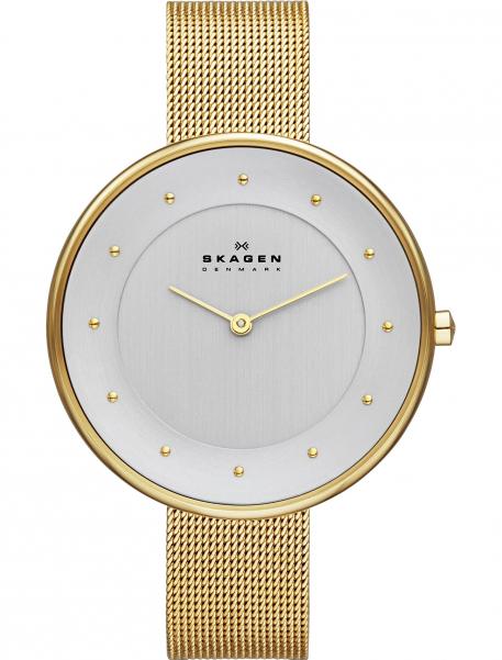 Наручные часы Skagen SKW2141