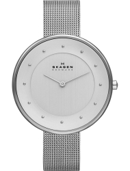 Наручные часы Skagen SKW2140