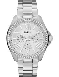 Наручные часы Fossil AM4481