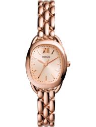 Наручные часы Fossil ES3599