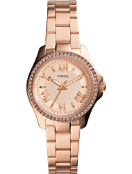 �������� ���� Fossil AM4578