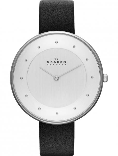 Наручные часы Skagen SKW2232