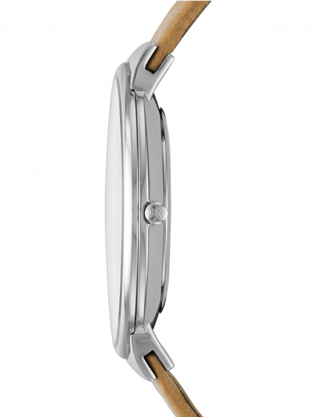 Наручные часы Skagen SKW6103 - фото № 2