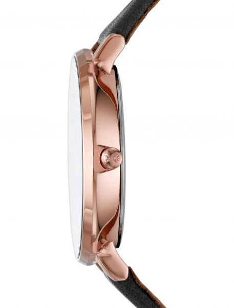 Наручные часы Skagen SKW2216 - фото № 2