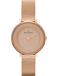 Наручные часы Skagen SKW2213