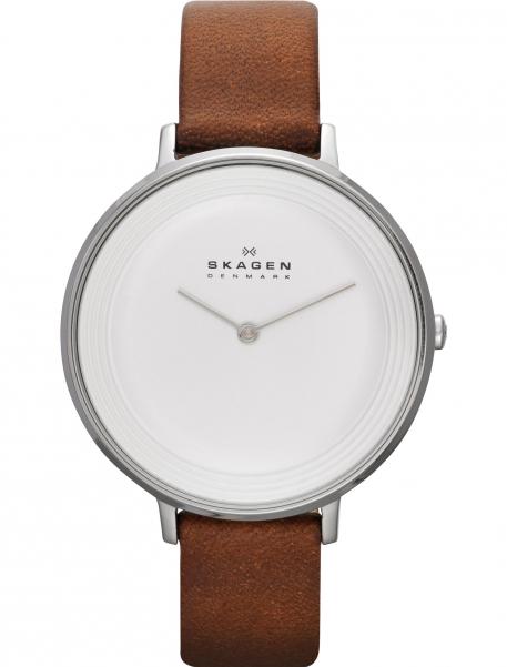 Наручные часы Skagen SKW2214