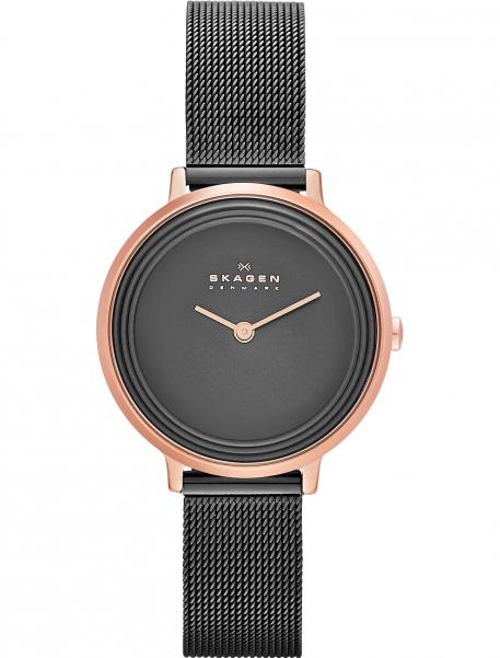 Наручные часы Skagen SKW2277