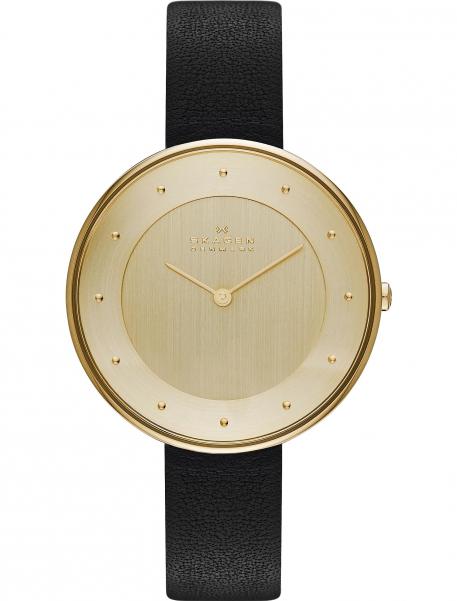 Наручные часы Skagen SKW2262