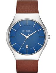 Наручные часы Skagen SKW6160