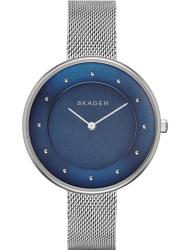 Наручные часы Skagen SKW2293