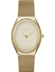 Наручные часы Skagen SKW2298