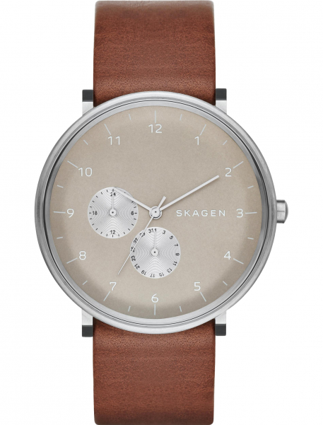 Наручные часы Skagen SKW6168