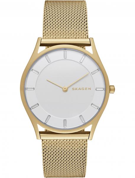 Наручные часы Skagen SKW2377