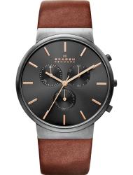 Наручные часы Skagen SKW6106