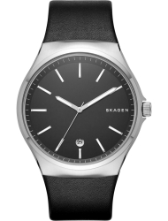 Наручные часы Skagen SKW6260