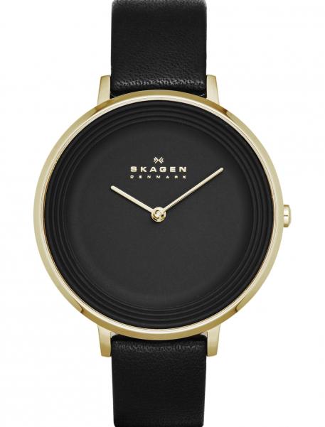 Наручные часы Skagen SKW2286 - фото спереди